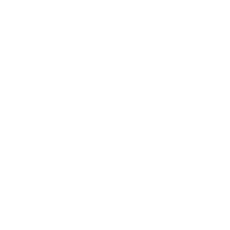 telephone icon in white